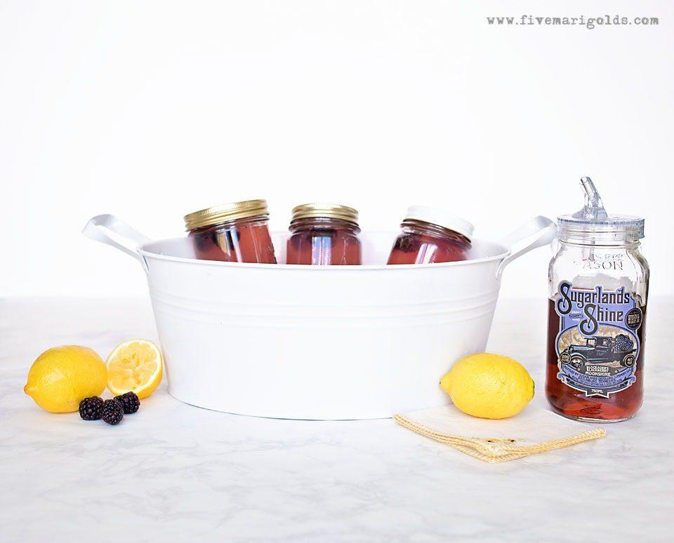 Spiked BlackBerry Lemonade Pina Colada Float   Five Marigolds
