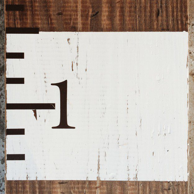 Family Growth Chart for Less Than $15 | Five Marigolds